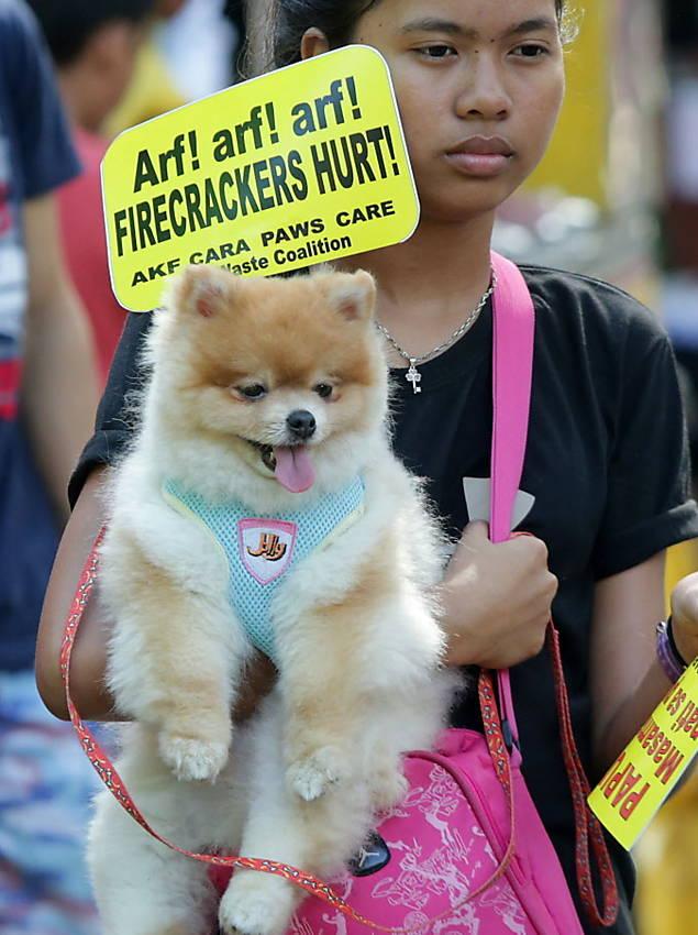 Protesto contra fogos