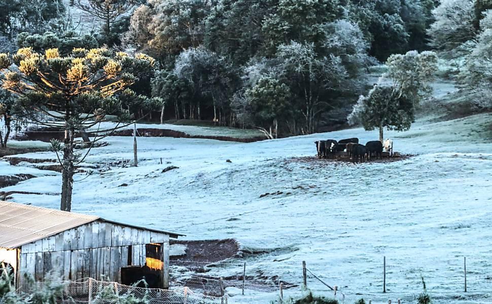 Frio intenso no Sul do Brasil