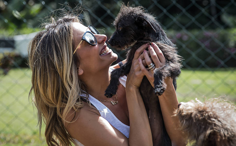 Animais resgatados na Cracolândia