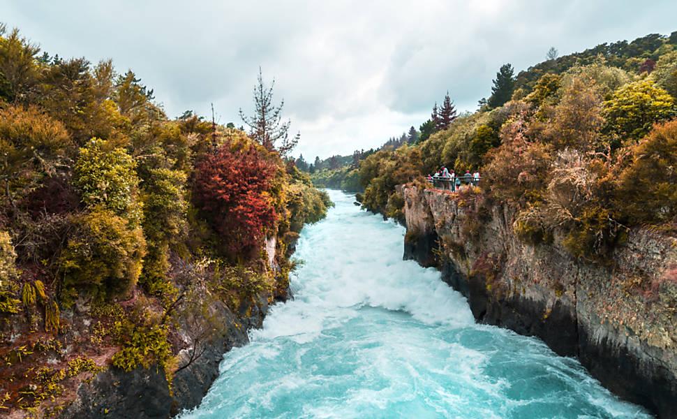 Nova Zelândia diversa
