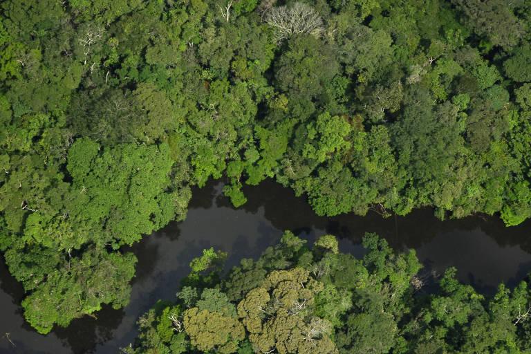 Renca (Reserva Nacional de Cobre e seus Associados)