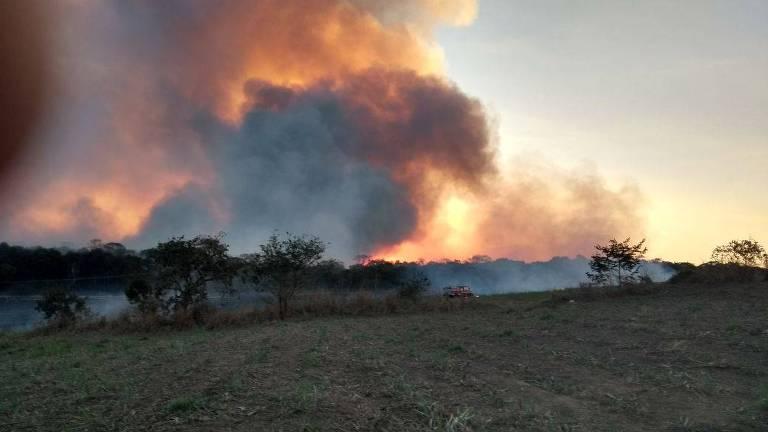 Parques de SP em chamas