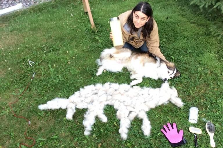A empresária Ana Bortoletto, 36, adotou Banoff Fos, mas o cão solta muito pelo e precisa ser sempre escovado