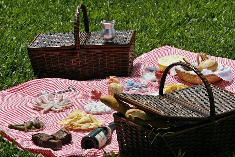 Piquenique no parque Villa-Lobos
