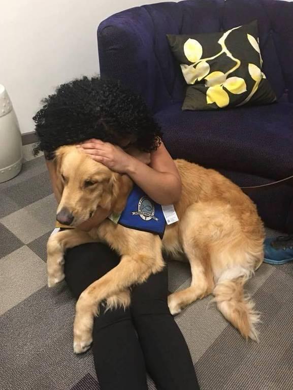 Cães terapeutas vão a Las Vegas