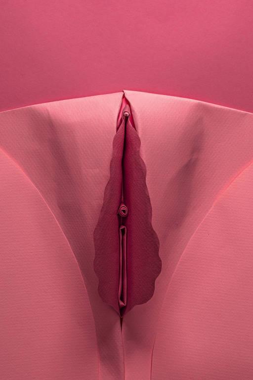 Dobradura representando uma vulva