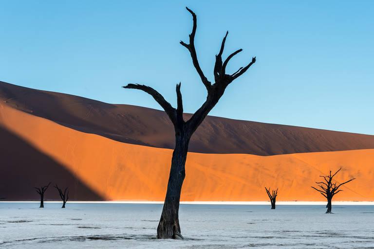 Deserto em cores