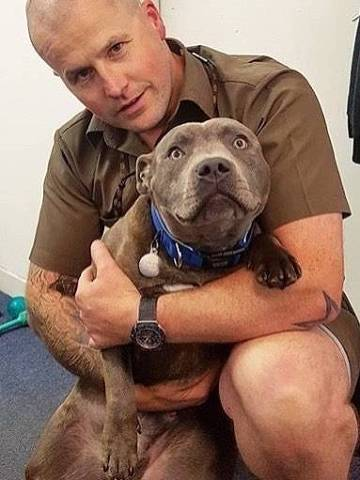 Entregadores compartilham fotos de cães