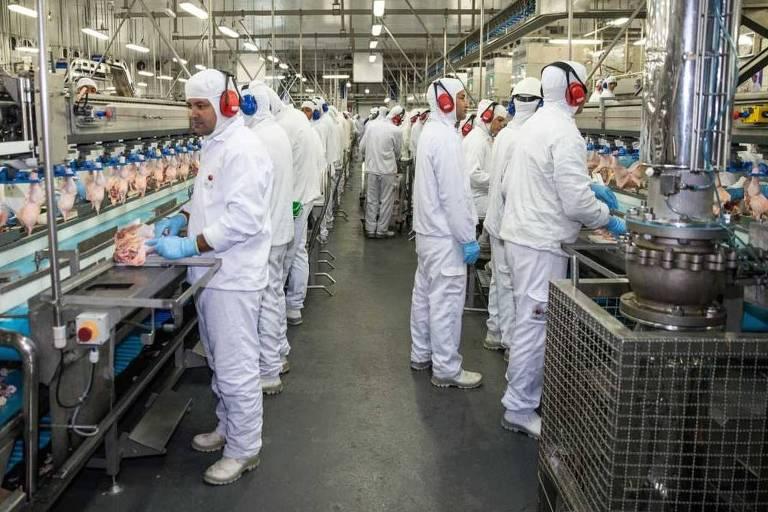 BRF sofre dano mínimo na Bolsa após nova fase da Carne Fraca