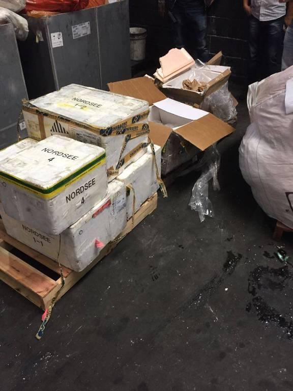 Ibama descarta 10 toneladas de salmão