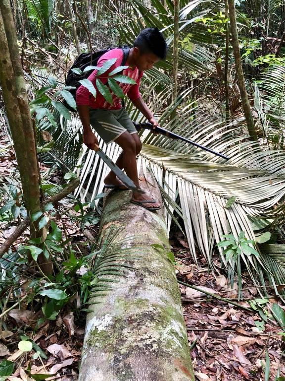 Grupo faz autodemarcação de terras no Pará