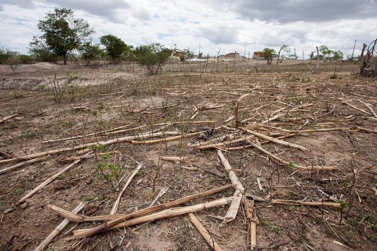 Catástrofes ambientais de 2017
