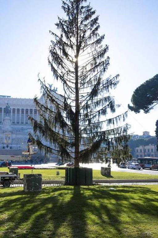Árvore de Natal de Roma em 2017
