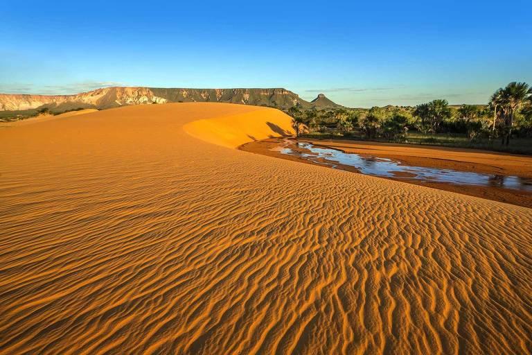 Resultado de imagem para jalapão dunas
