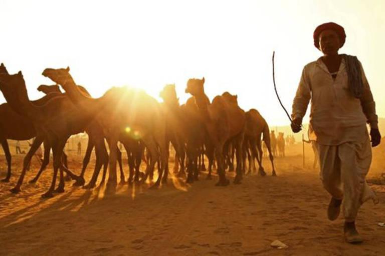 Na fronteira com o Paquistão, o Rajastão é o maior Estado da Índia
