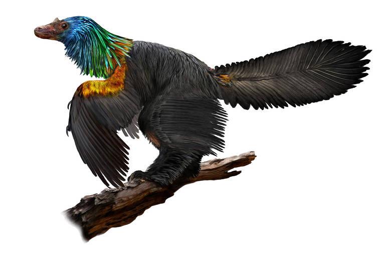 Representação de como seria o dinossauro Caihong