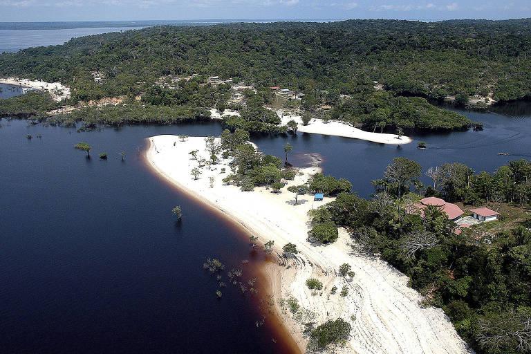 Viaja s�opaulo - Manaus