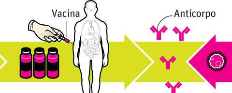 Infográfico 29.04.2014 -   Quase lá - Vacina contra a dengue passa por testes finais  -  (Editoria de Arte/Folhapress) *** PARCEIRO FOLHAPRESS - FOTO COM CUSTO EXTRA E CRÉDITOS OBRIGATÓRIOS ***