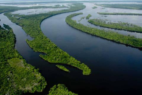 Turismo 24.09.2015 - Vista aérea de Anavilhanas, arquipélago fluvial no Amazonas; no alto, à esq., boto no parque nacional. (Foto: Alberto César Araújo - 13.set.11/Folhapress)