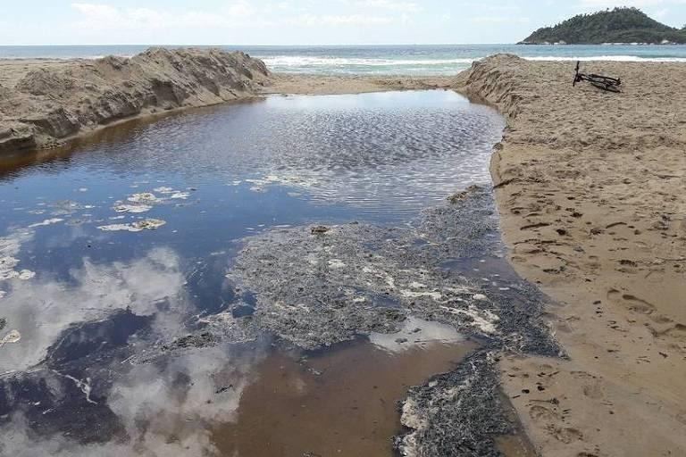 Água suja na praia do Campeche, no sul de Florianópolis