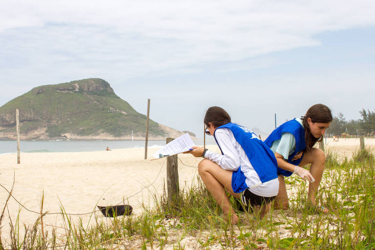 Voluntários participam de ação de coleta de dados sobre resíduos na Praia do Recreio, Zona Oeste do Rio