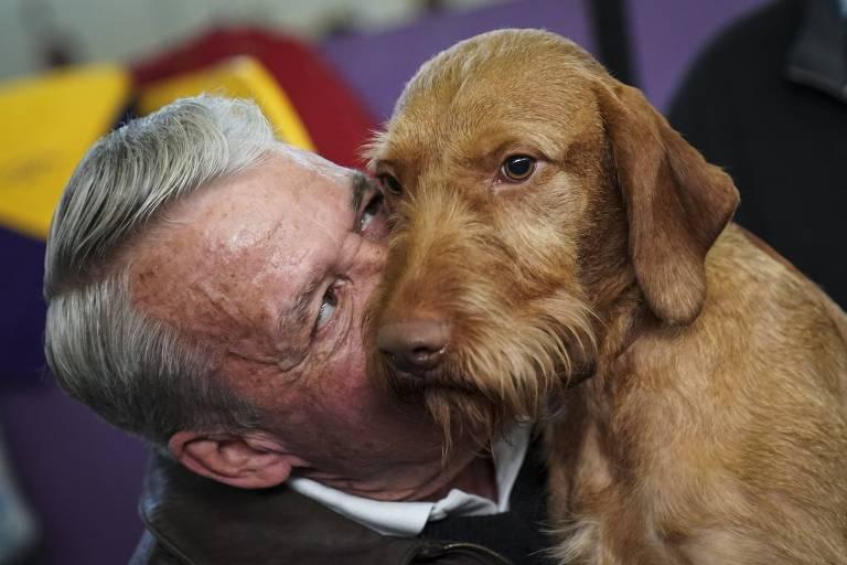 Westminster Dog Show  Bbc