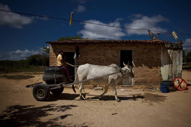 Homem passa por casa de barro dirigindo carroça puxada por boi