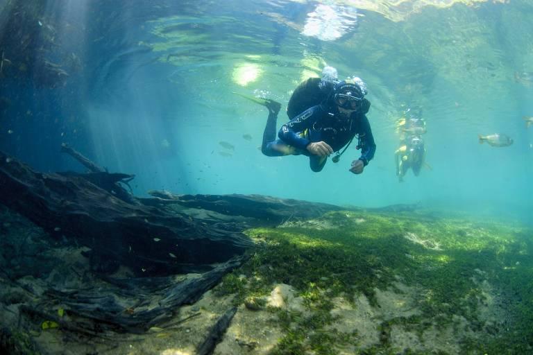 A foto foi tirada com a câmera submersa na água do rio, voltada para a sua superfície. Nela, há dois mergulhadores, sendo um deles mais próximo e nítido na imagem. O rio tem água turquesa, e um pouco de vegetação marinha na parte inferior