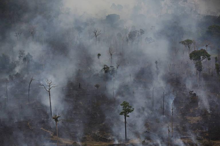 Fumaça de queimadas sobe em meio à floresta amazônica.