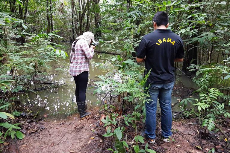 Funcionários do Ibama e do Instituto Evandro Chagas analisam água em rio