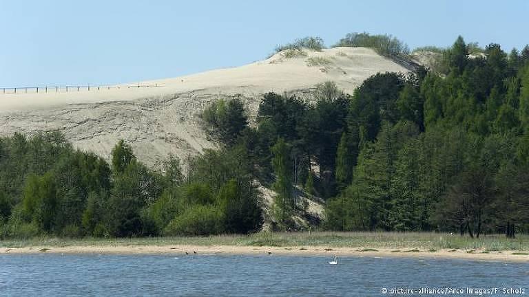A duna é formada por areia, mas nas suas partes mais baixas, perto do mar, é coberta de árvores e arbustos