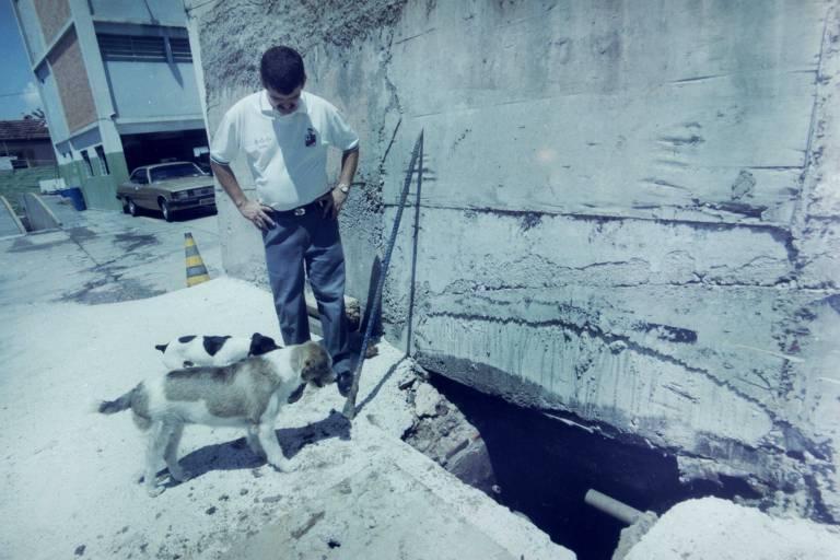 Cães Xuxa e Michelangelo ao lado de policial militar do 9º DP do Carandiru