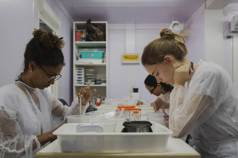 Pesquisadoras trabalham em laboratório da Fundação Oswaldo Cruz no Rio de Janeiro