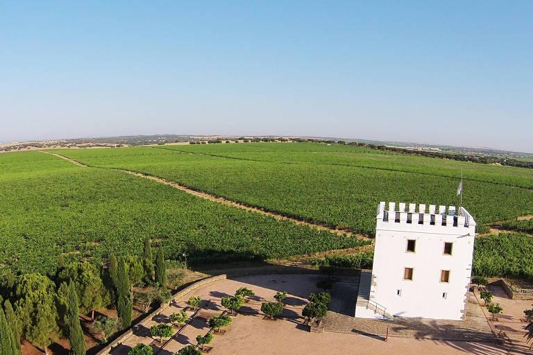 A torre do Esporão fica em um terreno plano, rodeada por plantações. Ela é branca e tem apenas dois andares, com formato quadrado