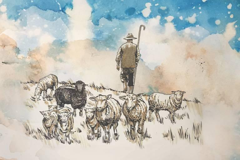 homem com ovelhas brancas e negra