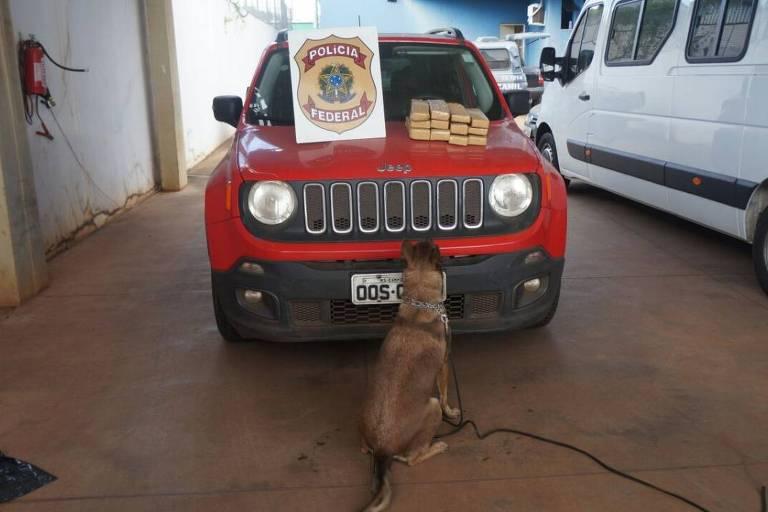 Cães farejadores encontram 9 kg de maconha no carro do empresário Breno Fernando Borges, 11 meses após sua apreensão pela Polícia Federal do MS