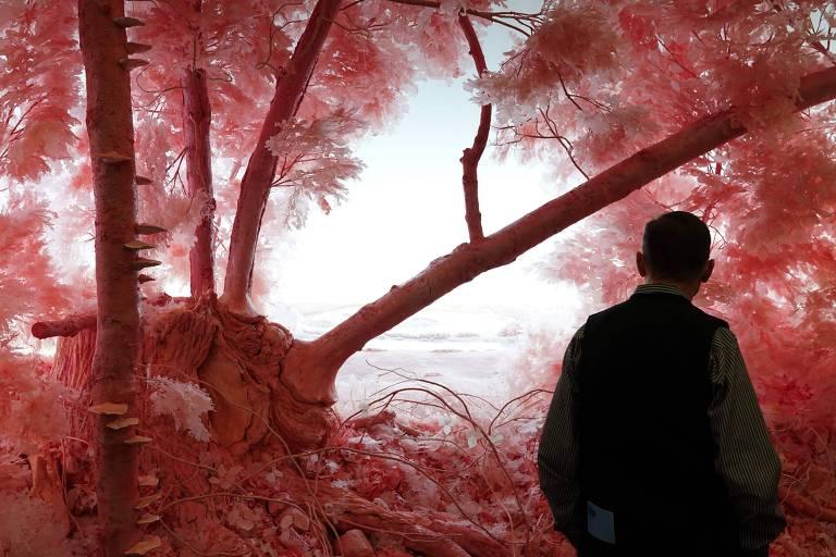 Homem observa o trabalho 'Pink Forest', do artista Patrick Jacobs, na feira Armory Show