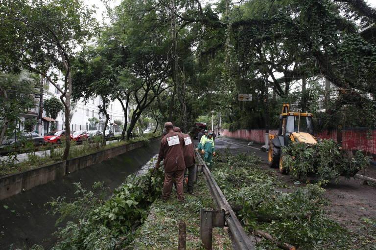 Foto mostra funcionários da prefeitura retirando galhos de árvores em avenida do Tucuruvi após chuva, na zona norte de SP