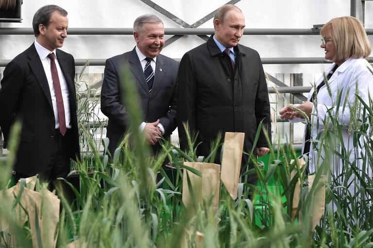 O presidente da Rússia, Vladimir Putin, visita o Centro Nacional de Grãos de Krasnodar, no sudoeste do país, na segunda-feira (12)