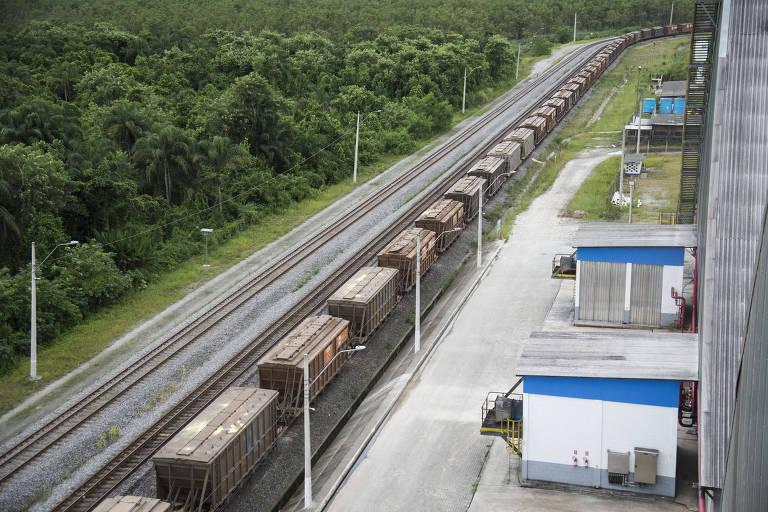 Trem de grãos para carregamento em navio em terminal do porto de Santos (SP)