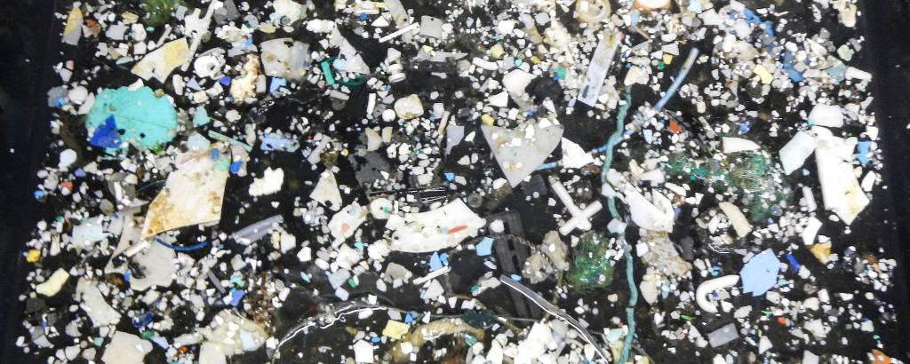 Amostras plásticas coletadas pela The Ocean Cleanup's Mega Expedition, em 2015