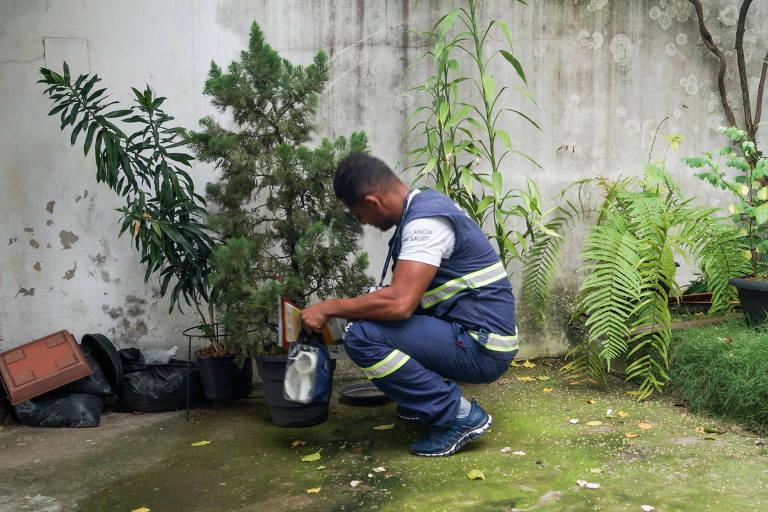 Combate a mosquito com aplicação de inseticida despenca na gestão Doria