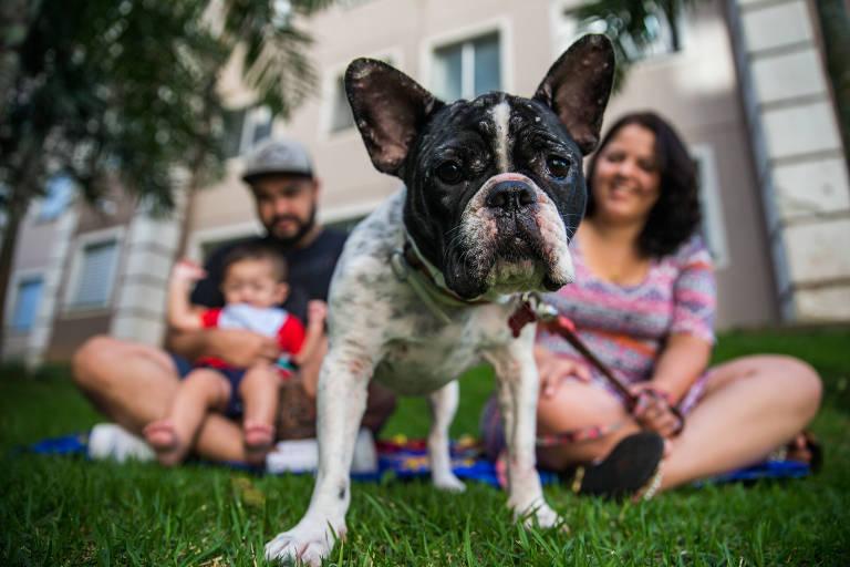 Cachorro Cacau, que está com leishmaniose, com seus donos, que optaram por tratar o pet e não sacrificar