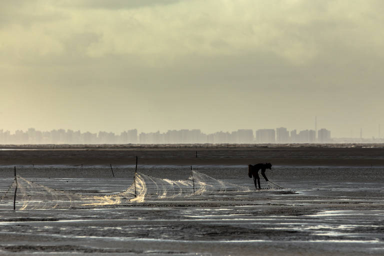 A foto mostra, em primeiro plano, um pescador em meio ao mar, segurando uma rede de pesca. O mar segue até o fundo da imagem, na ilha do horizonte, onde chega a São Luís, identificada pela orla repleta de prédios