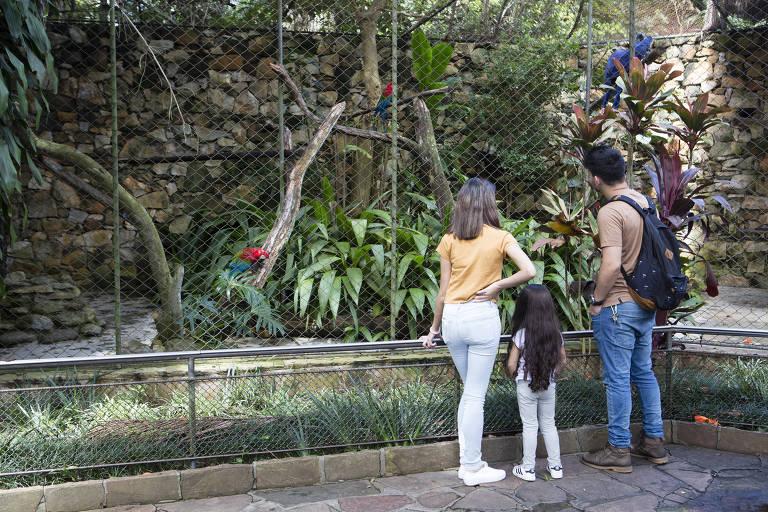 Visitantes observam araras azuis no Zoológico de São Paulo. Em 2018, o local permaneceu fechado por conta do risco de transmissão de febre amarela e foi reaberto no dia 15 de março do mesmo ano