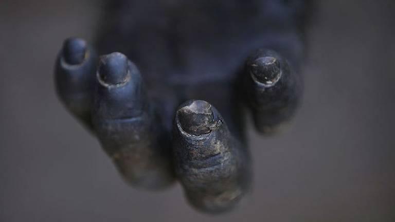 Os motivos por trás da Guerra dos Chimpanzés