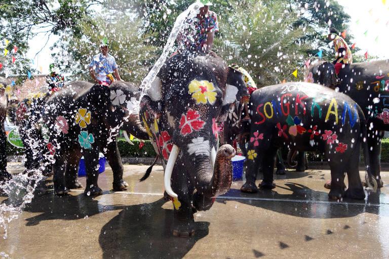 Elefantes são enfeitados durante a celebração do Festival da Água de Songkran, na Tailândia