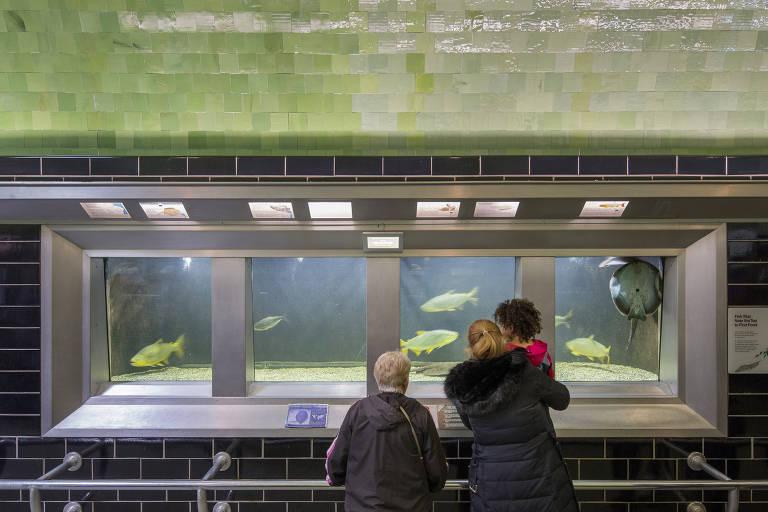 Visitantes no Belle Isle Aquarium, em Detroit, um dos mais velhos dos EUA. A obra, de 1904,  é de Albert Kahn, conhecido como 'O Aquiteto de Detroit'