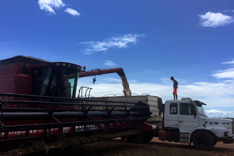 Caminhão é carregado de soja em Porto Nacional (TO)