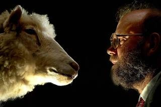 DR IAN WILMUT FACES DOLLY THE SHEEP AS SHE GOES ON DISPLAY AT THE NATIONAL MUSEUM OF SCOTLAND IN EDINBURGH